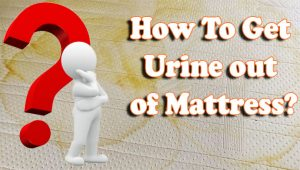 How To Get Urine out of Mattress