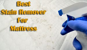 Best Stain Remover for Mattress